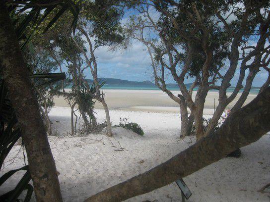 Auf dem Weg zum Strand - Whithaven Beach