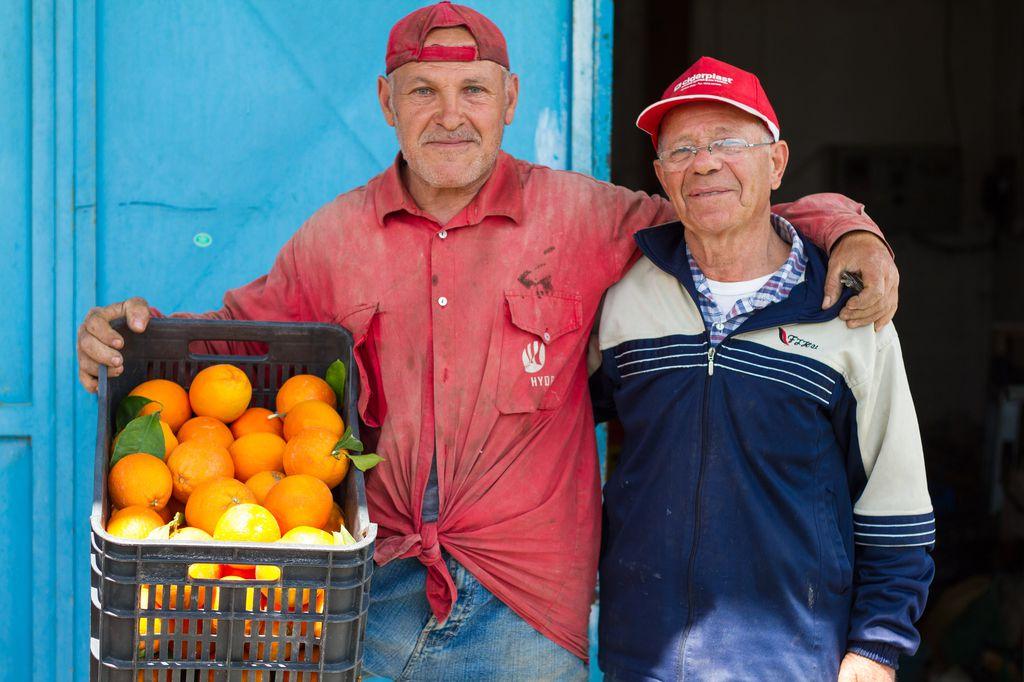 Zitrusfrüchte gedeihen auf Sizilien in Hülle und Fülle und sind für Plantagenbesitzer eine wichtige Einnahmequelle