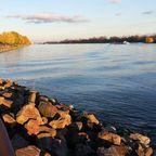 Herbststimmung am Rhein