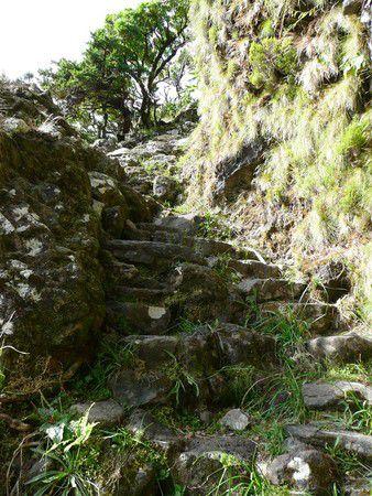 Endlose Stufen entlang der Steilwand