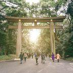 Top 10 Sehenswürdigkeiten in Tokio: Yoyogi-Park und Meji-Schrein