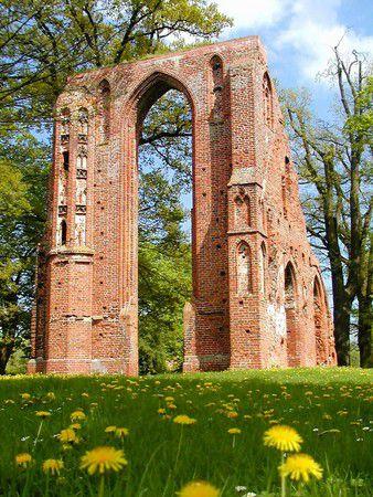 Klosterruine Eldena im Frühling