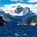 Naturparadies auf dem Pazifischen Feuerring in Alaska