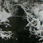 Schnee-Impressionen am Bach
