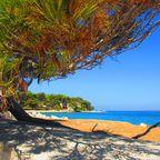 Brijuni Inseln
