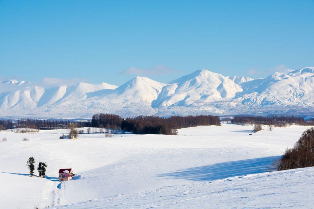 Sibirische Winde versorgen Niseko mit feinstem Pulverschnee