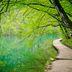 Steg im Plitvice Nationalpark