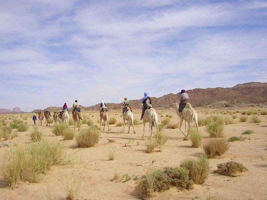 Ab in die Wüste...