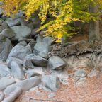 Bergstraße-Odenwald: Wo Kontinente aufeinander stießen