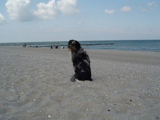 Cayman´s erster Strandurlaub