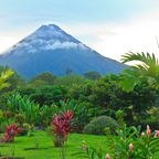 Zurück zur Bilderübersicht Costa Rica