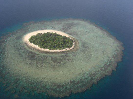 World, fiji island