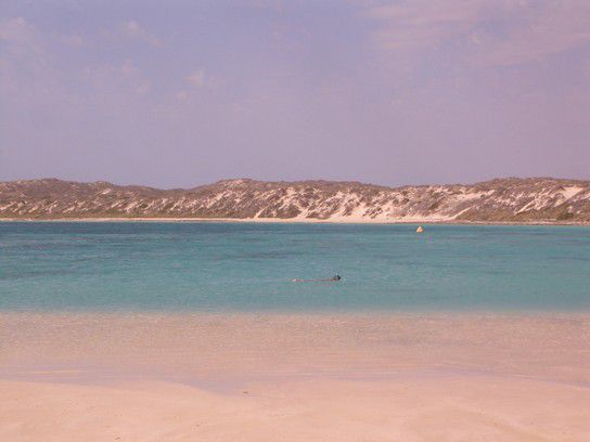 World, Coral Bay