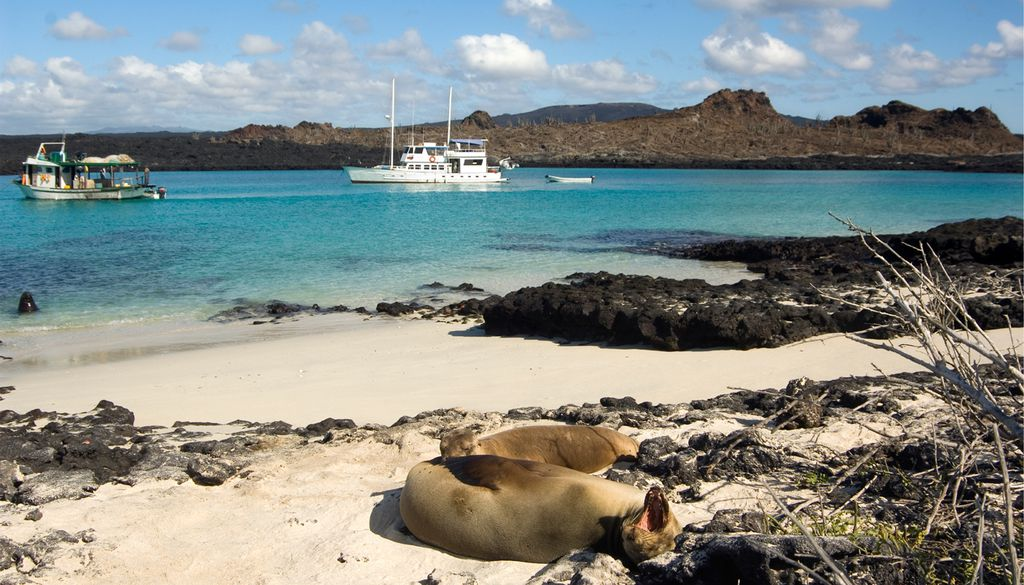 Mit dem Schiff von Ecuador zu den Galapagosinseln