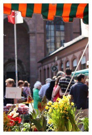 Mainzer Frühling