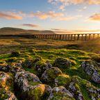Die schönsten Orte in England: Yorkshire