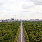 Studieren im Berliner Tiergarten