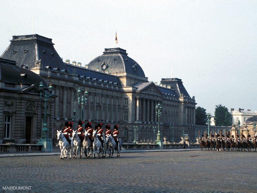 Palais du Roi