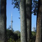 CN-Tower in Toronto