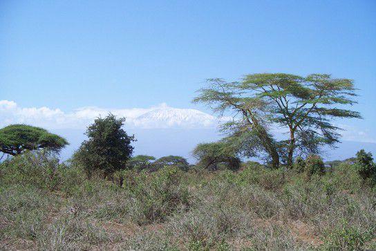 Schnee in Afrika