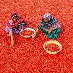 Hier leben die meisten Muslime – Platz 4: Bangladesch