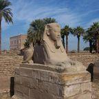 Sphingenallee in Luxor