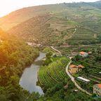 Top 10 Sehenswürdigkeiten in Portugal: Douro-Tal