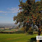 Bei St. Michael am Bruckbach
