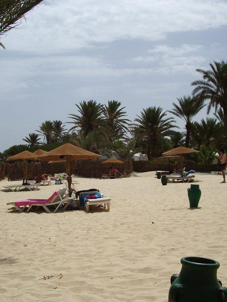 Tunesien 2007 - Palmenstrand Oase Zarzis