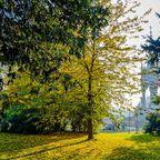 Kensington Gardens mit Albert Memorial im Hintergrund
