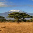 Blick von der Masai Mara auf den Kilimandscharo
