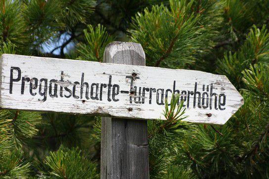 World, Kärnten