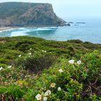 Die Westküste der Algarve