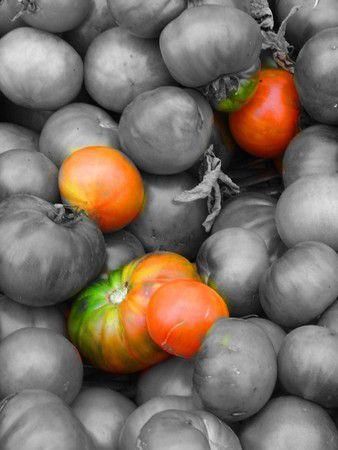 Das sind noch Tomaten