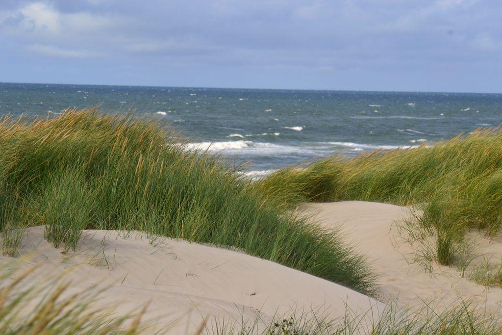 Henne Strand mit Blick über die Dünen