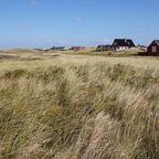 Häuser eingebettet in die Natur auf Rømø