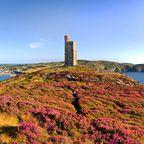 Isle of Man: Vom Avalon-Kandidaten zur Steueroase