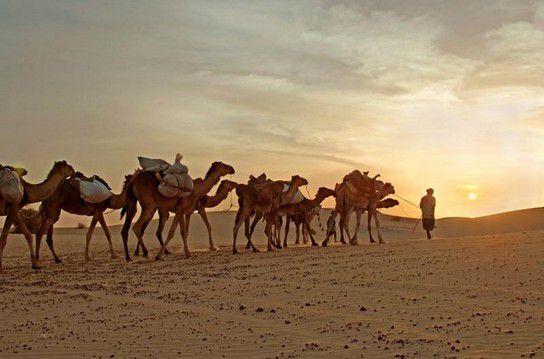 Bloß nicht in Dubai: Allein in die Wüste fahren