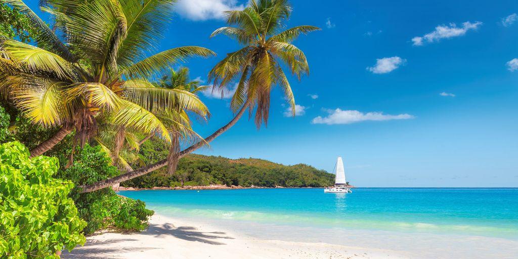 Sonne, Strand und Palmen: Das ist Jamaika