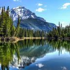 Alberta: Eine Schatzkiste für Dinosaurierforscher