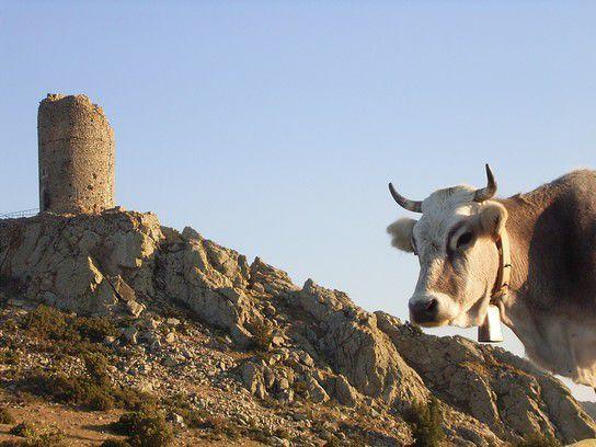 Hinterland von Argeles Pyreneen