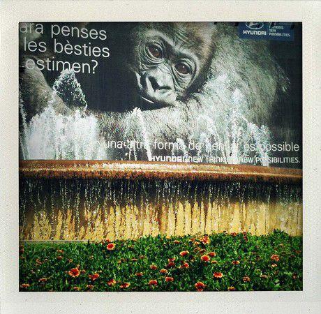 Barcelona-Sightseeing-Tour
