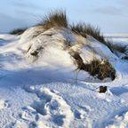 Winterliche Strandlandschaft