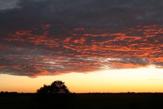 Sonnenuntergang im Neustädter Moor