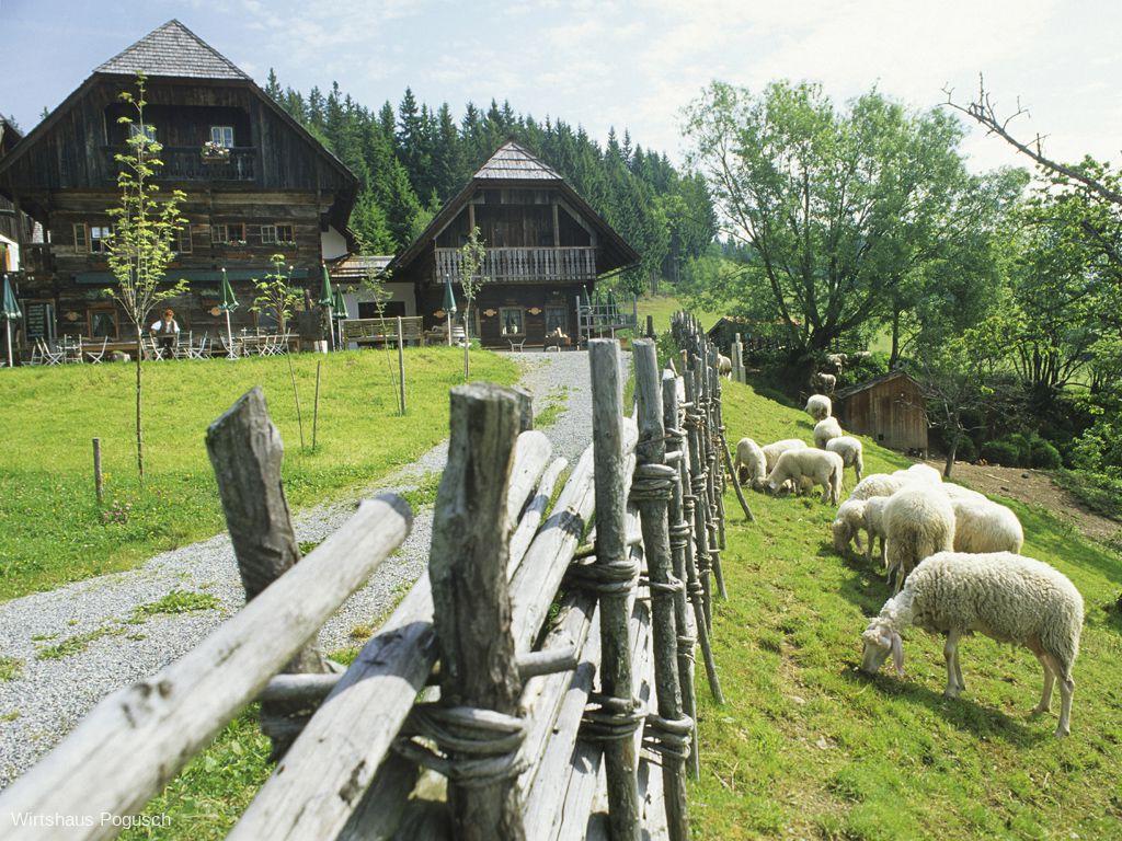 Wirtshaus Pogusch
