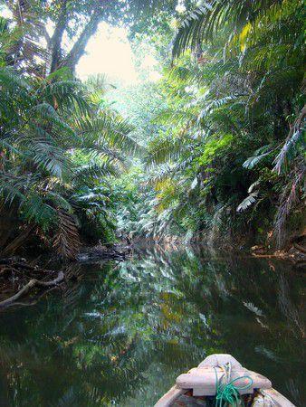 Cigenter River 2