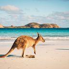 Die schönsten Reiseziele für Alleinreisende: Australien
