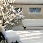 Plätzchen im Schnee 2!