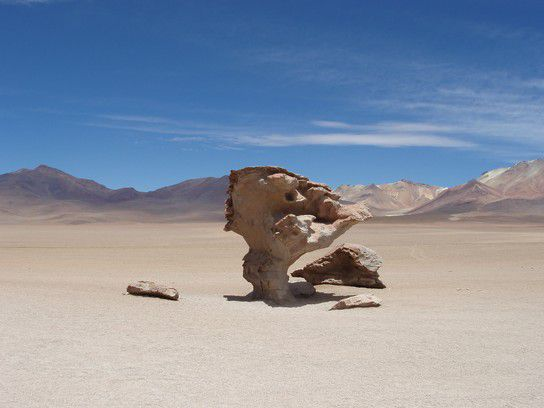 Arbol de Piedra Bolivien