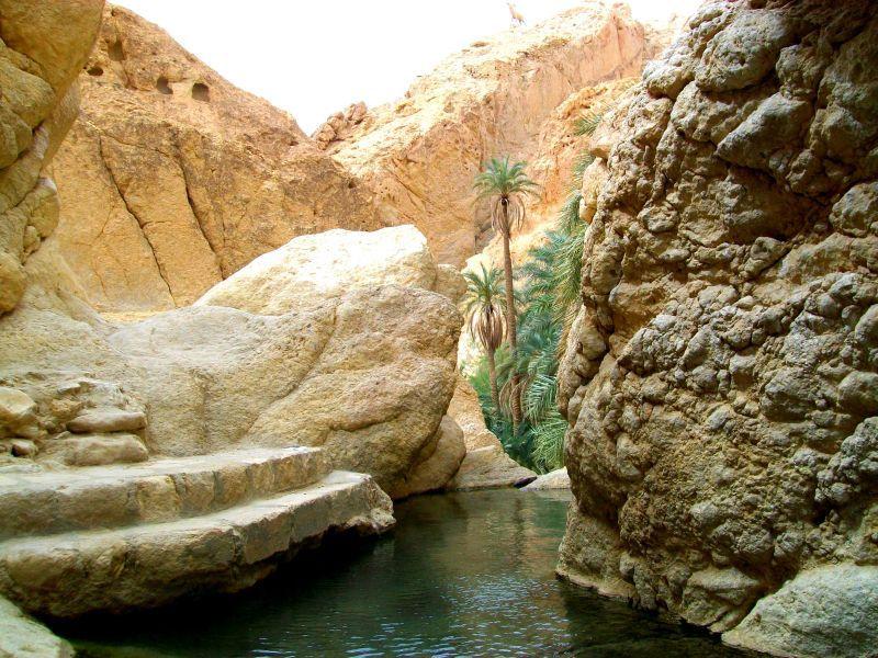 Kühle Oase zwischen Felsen